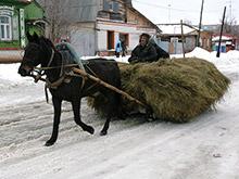 Минтранс РФ обяжет водителей гужевого транспорта получать права и номера - «Автоновости»